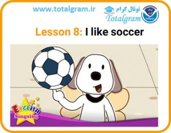 Lesson 8: I like soccer